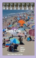 Bizarro Fiction!: Journal of Experimental Fiction 37 - Eckhard Gerdes, Jeff Burk