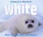 Living in a World of White: Where Survival Means Blending in - Tanya Lee Stone