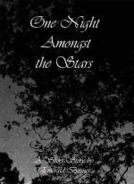 One Night Amongst the Stars - Emerald Barnes