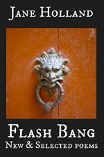 Flash Bang: New and Selected Poems - Jane Holland