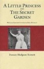 A Little Princess and the Secret Garden - Frances Hodgson Burnett