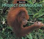 Project Orangutan - Susan Ring