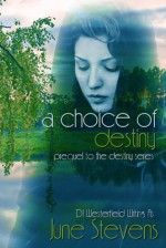 A Choice of Destiny (Destiny, Prequel) - June Stevens, D.J. Westerfield