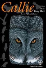 Callie: A Great Gray Owl - Bonnie Highsmith Taylor