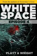 WhiteSpace: Episode 4 - Sean Platt, David W. Wright