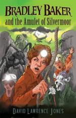 Bradley Baker and the Amulet of Silvermoor (Amazing Adventures of Bradley Baker, #2) - David Lawrence Jones