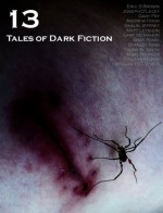 13: Tales of Dark Fiction - Adam Bradley, Eric S. Brown, Alan Spencer, Fred Venturini, William R.D. Wood, Joseph D'Lacey, Andrew Hook, Shaun Jeffrey, Matt Leyshon, Gary McMahon, Andy Remic, Stanley Riiks, Tommy B. Smith
