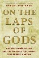 On the Laps of Gods: The Red Summer of 1919 and the Struggle for Justice That Remade a Nation - Robert Whitaker