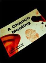A Chance Meeting - Emerald Barnes