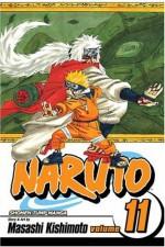 Naruto, Vol. 11: Impassioned Efforts - Masashi Kishimoto, Frances Wall