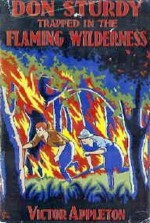 Don Sturdy Trapped in the Flaming Wilderness or, Unearthing Secrets in Central Asia - Victor Appleton, Nat Falk