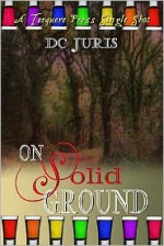 On Solid Ground - D.C. Juris