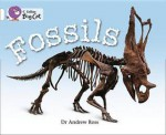Fossils: Band 10 - Andrew Ross