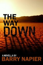 The Way Down - Barry Napier