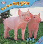 See How They Grow Pig [With Stickers] - Mary Ling
