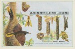 Architecture by Birds and Insects: A Natural Art - Peggy Macnamara, John Bates, David Quammen