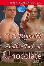 Another Taste of Chocolate (Sequel to A Taste of Chocolate) - E.A. Reynolds