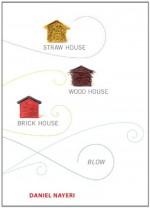 Straw House, Wood House, Brick House, Blow: Four Novellas by Daniel Nayeri - Daniel Nayeri