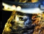 Bending Light into Verse III - Jennifer Tomaloff, Ed Makowski, Prathna Lor, Eryk Wenziak, Felino A. Soriano, J.D. Nelson, Helen Vitoria, John Sibley Williams, Howie Good, Joseph A.W. Quintela, Keith Higginbotham, Kristina Marie Darling, Andrew Zawacki, Mark Lamoureux, .B.L Pawelek, Matina L. Stamatak