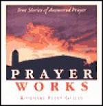 Prayer Works! - Rosemary Ellen Guiley