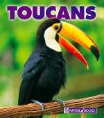 Toucans - Mary Ann McDonald