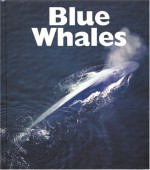 Blue Whales - Mary Ann McDonald