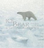 Ice Bear: In the Steps of the Polar Bear - Nicola Davies, Gary Blythe