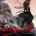 Everbound: An Everneath Novel, Book 2 - Amy Rubinate, Brodi Ashton