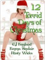 12 Torrid Days of Christmas - C.J. England, Emma Sinclair, Rusty Wicks