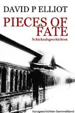 Pieces of Fate (Schicksalsgeschichten) (German Edition) - David P. Elliot