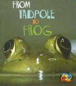 From Tadpole to Frog - Anita Ganeri