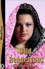 Wild Rendezvous (Rendezvous trilogy) - Victoria Blisse