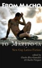 From Macho To Mariposa: New Gay Latino Fiction - Charles Rice-González, Charles Vazquez, Ben Francisco