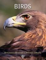 Birds - Encyclopaedia Britannica, Encyclopaedia Britannica