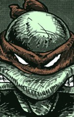 TMNT Collected Book (Volume One) - Kevin Eastman, Peter Alan Laird