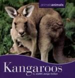 Kangaroos - Judith Jango-Cohen