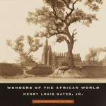 Wonders of the African World - Henry Louis Gates Jr., Lynn Davis