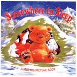 Somewhere to Sleep - Daniel Howarth, Fernleigh Books, Rebecca Elliott