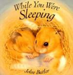 While You Were Sleeping - John Butler