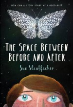The Space Between Before and After - Sue Stauffacher