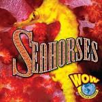 Seahorses (Wow World Of Wonder) - Judy Wearing