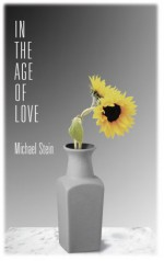 In the Age of Love - Michael Stein