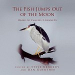 The Fish Jumps Out of the Moon - Steve Kennedy, Dan Guenther