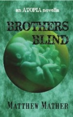 Brothers Blind - Matthew Mather