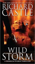 Wild Storm: A Derrick Storm Thriller - Richard Castle