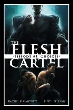 The Flesh Cartel #3: Choices (The Flesh Cartel Season 2: Fragmentation) - Heidi Belleau, Rachel Haimowitz