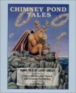 Chimney Pond Tales/Cassette/Unabridged - John McDonald