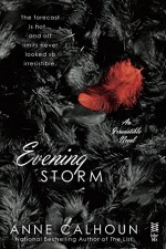 Evening Storm - Anne Calhoun
