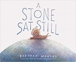 A Stone Sat Still: (Environmental and Nature Picture Book for Kids, Perspective Book for Preschool and Kindergarten, Award Winning Illustrator) - Brendan Wenzel