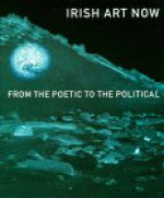 Irish Art Now: From the Pacific to the Political - Declan McGonagle, Fintan O'Toole